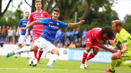 Bundesliga season preview: SV Darmstadt 98