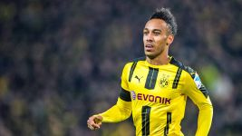 Dortmund's Aubameyang a force of nature