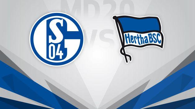 hertha berlin vs schalke 04 prediction