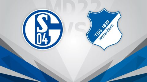 Schalke welcome a determined Hoffenheim