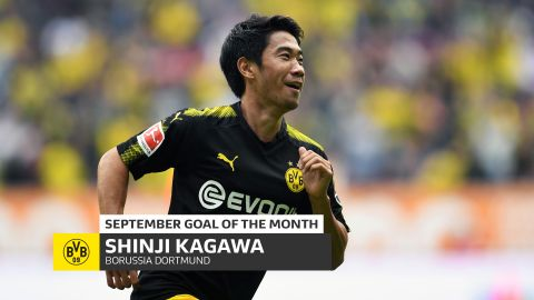 Kagawa: September Goal of the Month winner