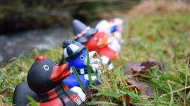 BunDucksLiga: the final