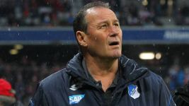 Stevens resigns as Hoffenheim coach