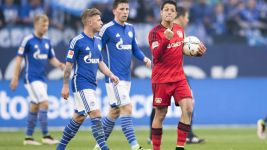 Chicharito seals thrilling Leverkusen win over Schalke