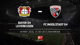 Celebrations all round as Leverkusen host Ingolstadt