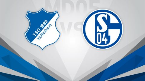 Troubled Schalke visit Hoffenheim