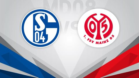 Schalke keen to keep climbing against Mainz