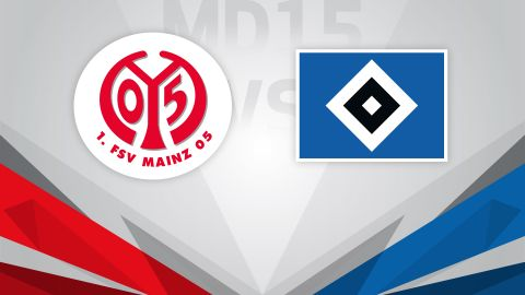 Mainz out to halt Hamburg revival