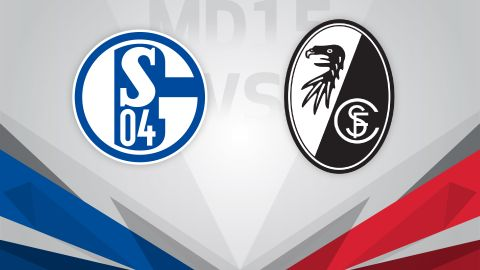 Schalke eye morale boost against Freiburg