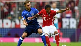 Bayern held by dogged Schalke