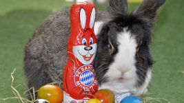 Happy Easter from the Bundesliga!