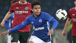 US duo promoted to Schalke first team
