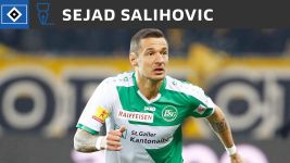 Hamburg sign Salihovic