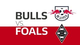 Watch: Bulls vs. Foals