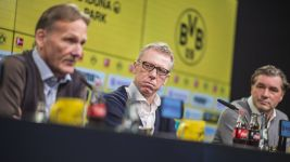 Peter Stöger named new Dortmund coach