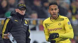 Stöger planning ahead with Aubameyang
