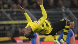 Like a Bat out of BVB