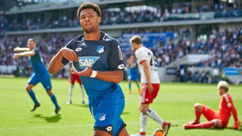 Watch: Hoffenheim 2-0 Hamburg