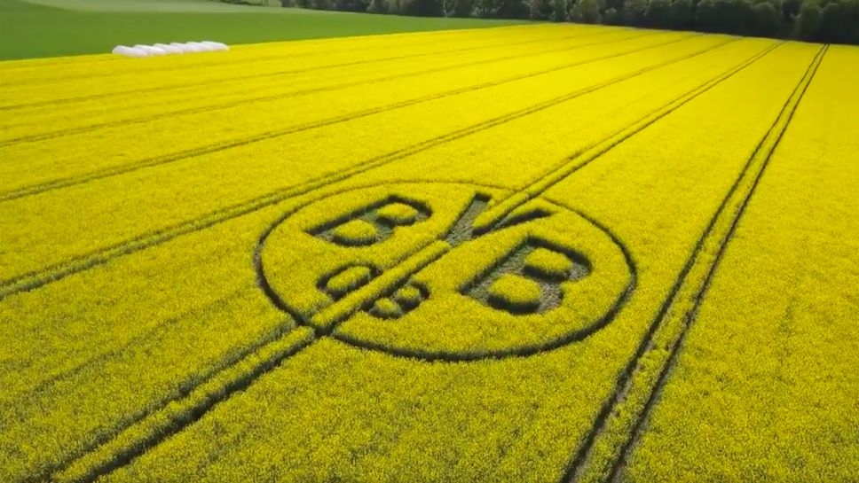 Bundesliga Borussia Dortmund Fans Create Club Logo In