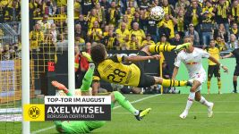 Top-Tor im August: Axel Witsel