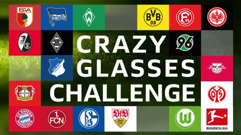 Crazy Glasses Challenge: Overview