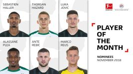 Bundesliga Player of the Month: November nominees