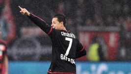 Chicharito settled at Bayer